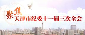 聚焦天津市纪委十一届三次全会