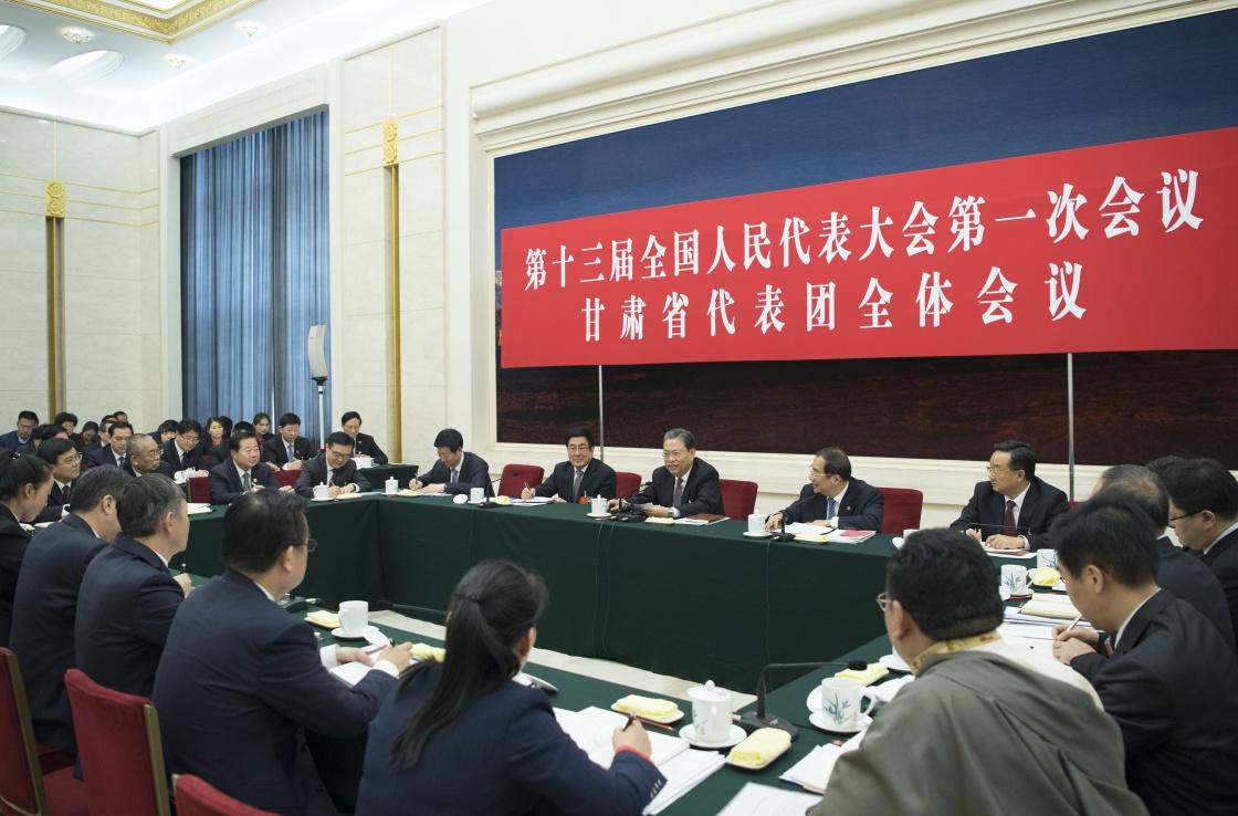 赵乐际参加全国人大一次会议甘肃代表团审议