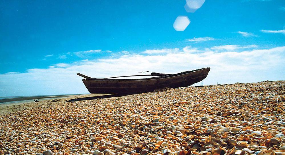 贝壳堤是由海生贝壳及其碎片和细砂、粉砂、泥炭、淤泥质粘土薄层组成,并与海岸线大致平行或交角很小的堤状地貌堆积体。形成于高潮线附近,为古海岸在地貌上的可靠标志。天津陆地堆积平原中自然向海排列有Ⅰ、Ⅱ、Ⅲ、Ⅳ四道贝壳堤,与现代海岸线大体平行呈垄岗状不连续分布,代表了四个时期海岸的位置。