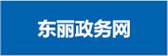东丽政务网