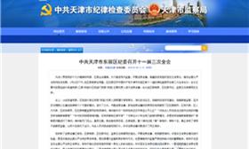 中共天津市东丽区纪委召开十一届三次全会