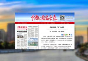 """【媒体关注天津】就违法建设""""大棚房""""问题问责10名局级干部"""