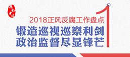 【2018正风反腐工作盘点①】锻造巡视巡察利剑 政治监督尽显锋芒