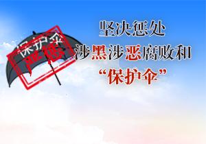 专栏 | 严惩黑恶 破网打伞