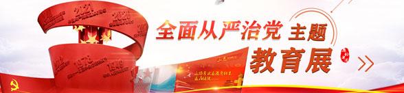 全面從嚴(yan)xian)zhi)黨主(zhu)題教育展