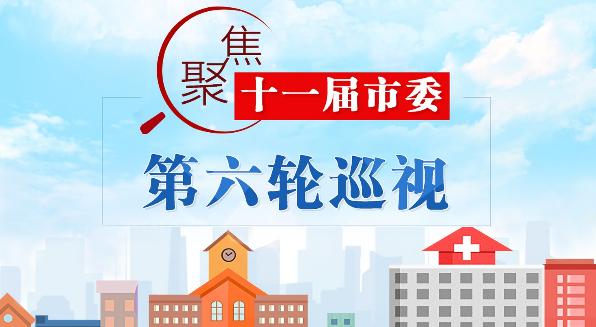 十一届市委第六轮巡视反馈意见摘要(二)