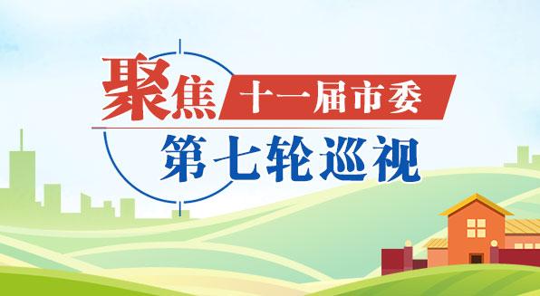 十一届天津市委第七轮专项巡视反馈全部完成