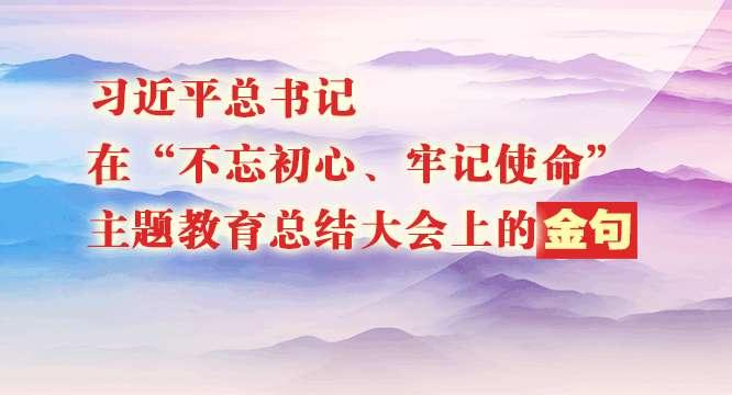 """习近平总书记在""""不忘初心、牢记使命""""  主题教育总结大会上的金句"""