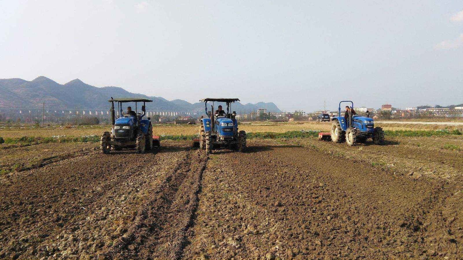 纪检监察机关聚焦重点难点 监督助力农业生产