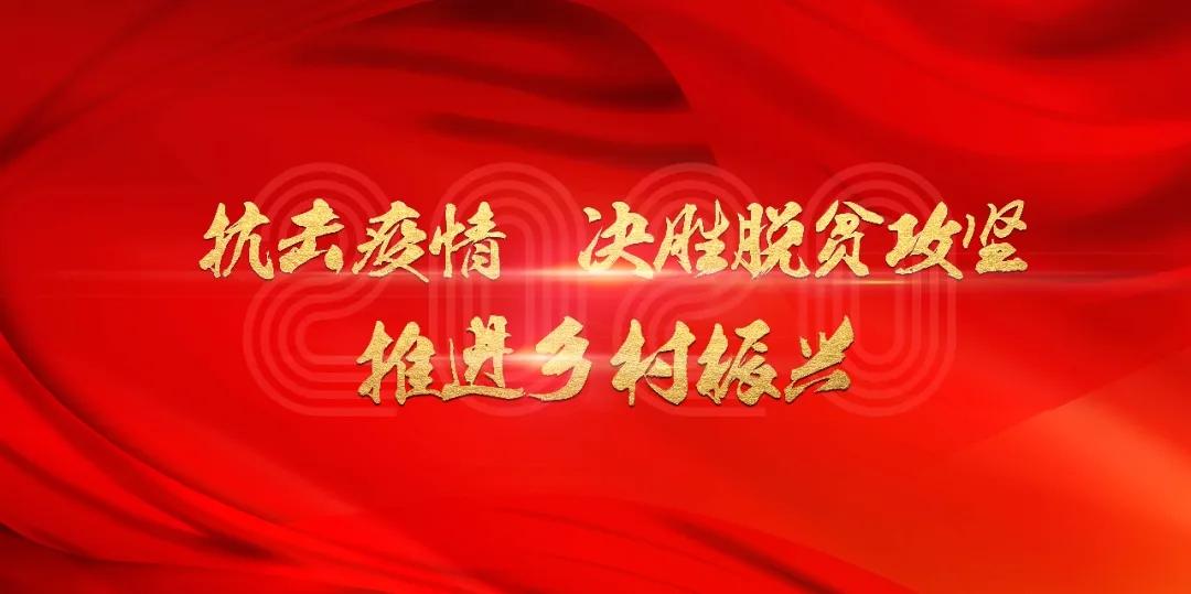 """武清深入推进乡村振兴战略,奋力写好""""三农""""新篇章"""