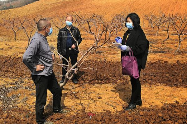 抗疫镜头丨以精准有效监督保障农业生产