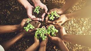 """为""""新就业形态""""厚植发展土壤"""
