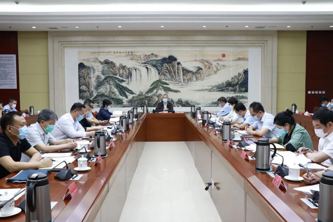 武清区京津冀协同发展领导小组召开会议