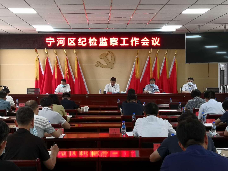 宁河区召开全区纪检监察工作会议