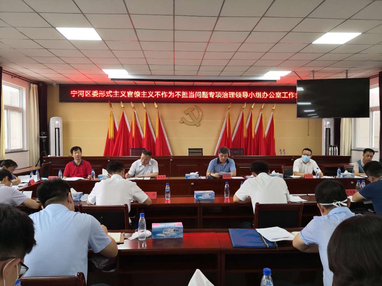 宁河区召开形式主义官僚主义 不作为不担当问题 专项治理领导小组办公室工作会议