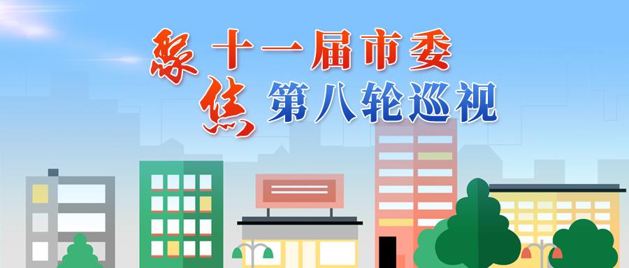 十一屆天津市委第八輪第一批巡視反饋全部完成