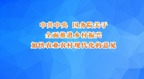 中共中央國務院關于全面推進鄉村振興 加快農業農村現代化的意見