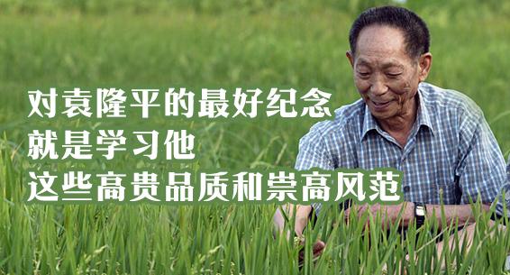 海报丨对袁隆平的最好纪念 就是学习他这些高贵品质和崇高风范