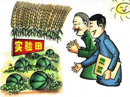 漫画:党员干部在基层