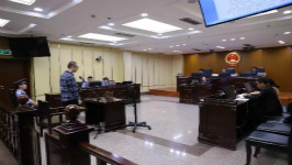 西青法院依法公开审理我区被留置第一人田健男案