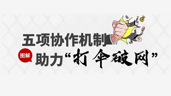 """图解丨五项协作机制 助力""""打伞破网"""""""
