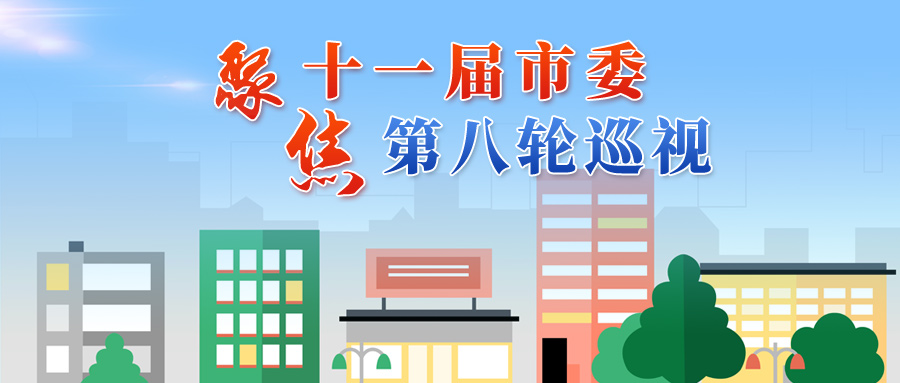 十一届天津市委第八轮第一批巡视反馈全部完成